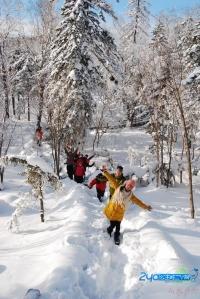12月678号,大美雪乡--童话般的世界